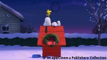 Snoopy schlafend