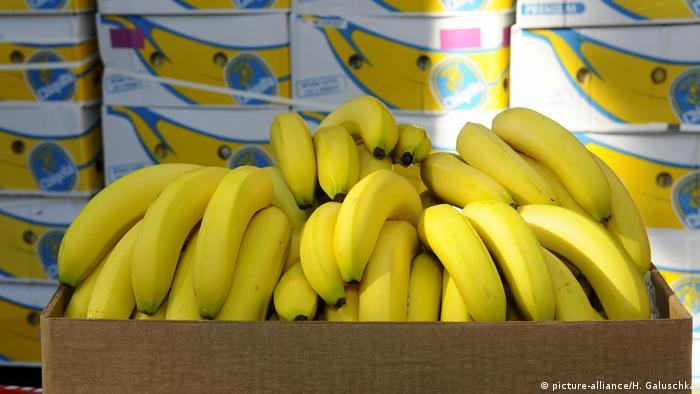 Наркотики були знайдені в контейнері з бананами