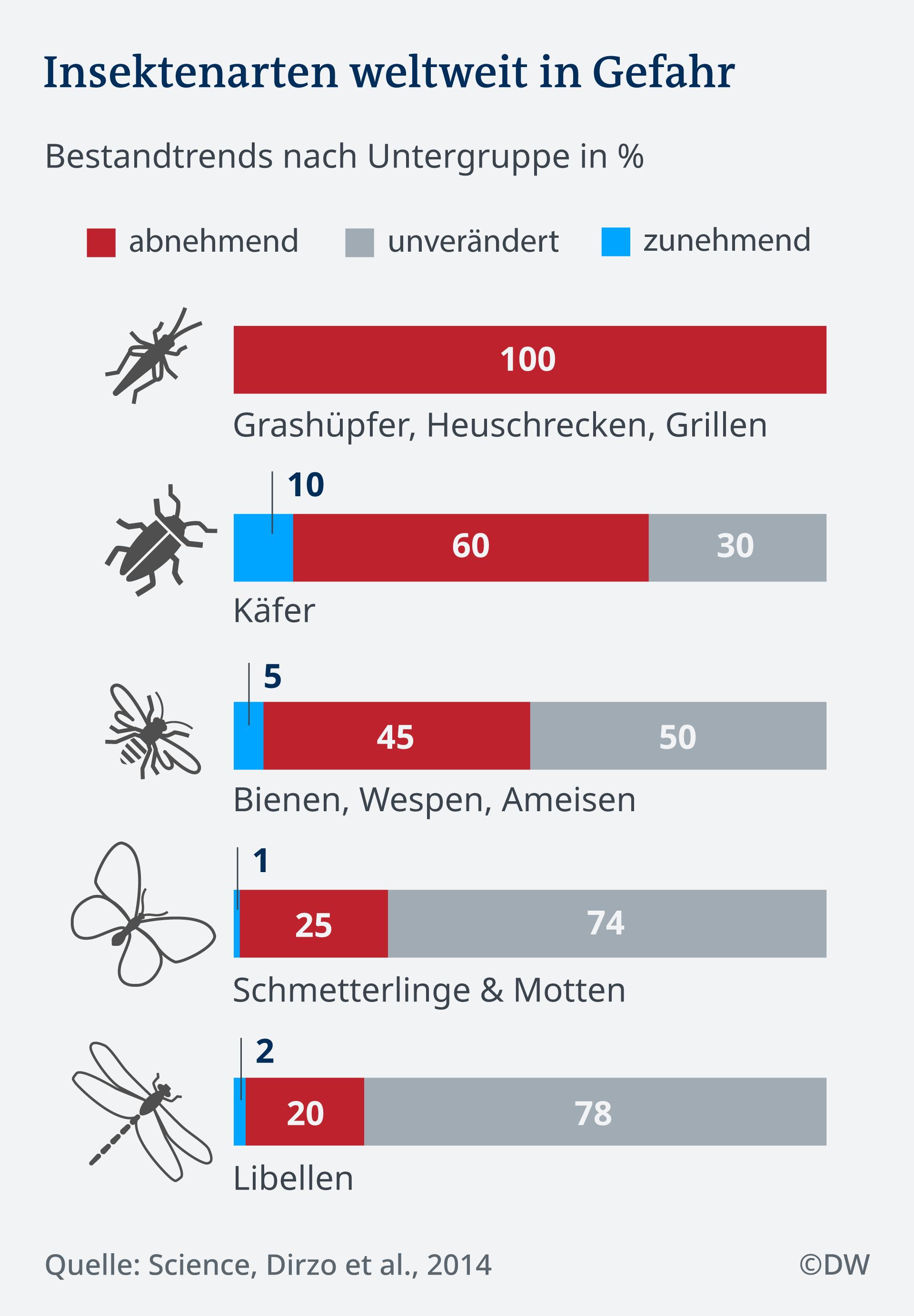 Infografik Insektenarten weltweit in Gefahr