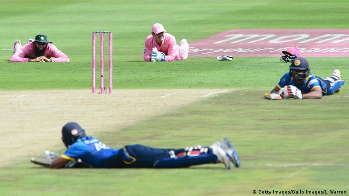 Cricket Bieneninvasion beim Spiel Südafrika - Sri Lanka