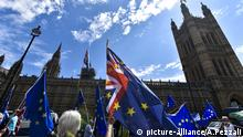 Anti Brexit Protest außerhalb des Parlaments in London (picture-alliance/A.Pezzali)