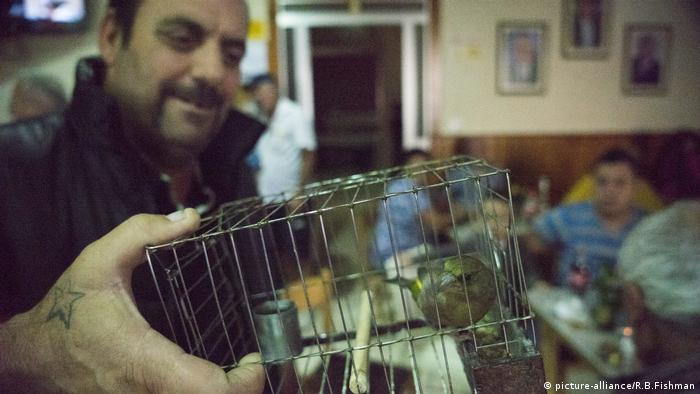 Man holds a bird in a cage in Malta