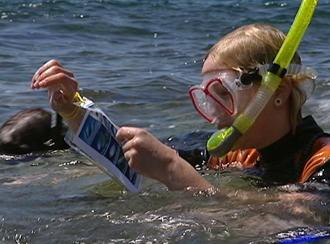 Ein Junge mit Taucherbrille und Schnorchel im Meer