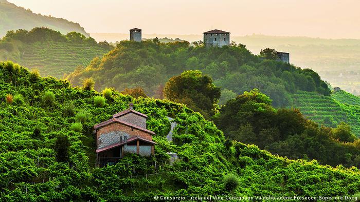San Martino mountain pass (Consorzio Tutela del Vino Conegliano Valdobbiadene Prosecco Superiore Docg)