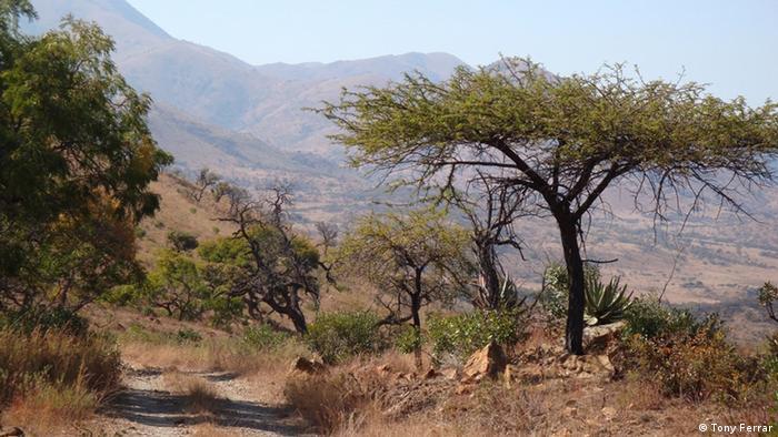 UNESCO World Heritage Nominierungen Welterbestätten 2018 Barberton Makhonjwa Mountains Südafrika (Tony Ferrar)