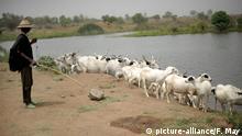Nigeria - Gewalt zwischen Hirten und Bauern