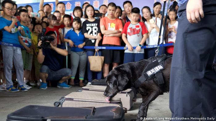 China Dogenverbrennung Internationaler Anti Drogen Tag (Reuters/Liang Weipei/Southern Metropolis Daily)