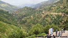 Pakistan - Baumplantagen in Buner und Herosha