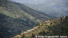 In this picture taken on May 18, 2018, shows houses in a forest area of the Swat valley of Khyber Pakhtunkhwa in northwest Pakistan. - The change is drastic: around the region of Heroshah, previously arid hills are now covered with forest as far as the horizon. In northwestern Pakistan, hundreds of millions of trees have been planted to fight deforestation. (Photo by FAROOQ NAEEM / AFP) / To go with 'PAKISTAN-ENVIRONMENT-TREE,FOCUS' by Joris FIORITI (Photo credit should read FAROOQ NAEEM/AFP/Getty Images)