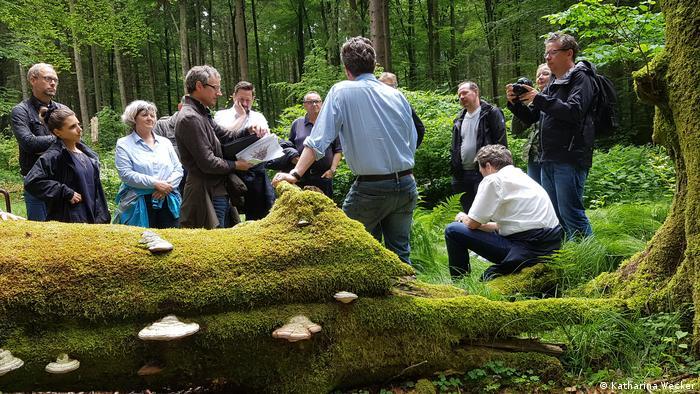 Foto:Kant zeigt, welche Tiere und Organismen in totem Holz leben (Quelle: Katharina Wecker)