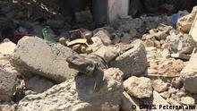 A suicide belt among rubble