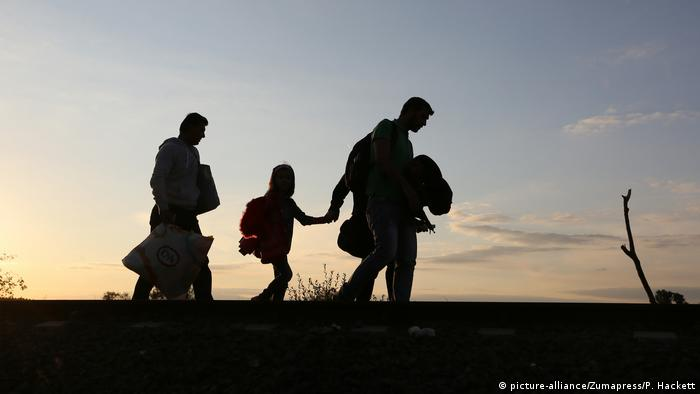 Migrants cross the border into Hungary from Serbia (picture-alliance/Zumapress/P. Hackett)