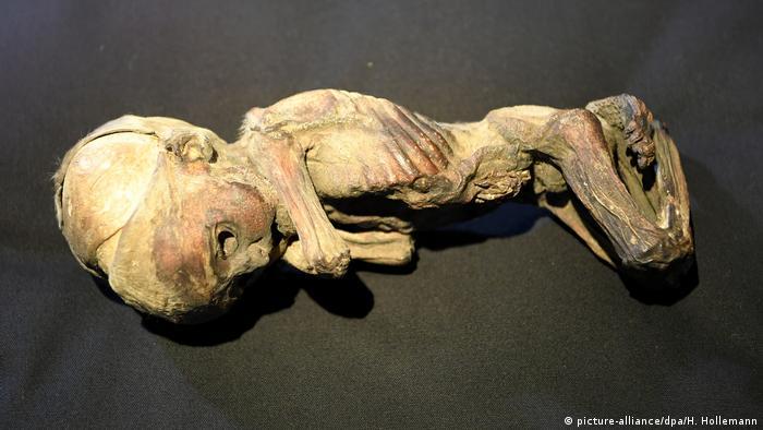 Ausstellung Ta-cheru. Eine Reise ins Innere der Mumie