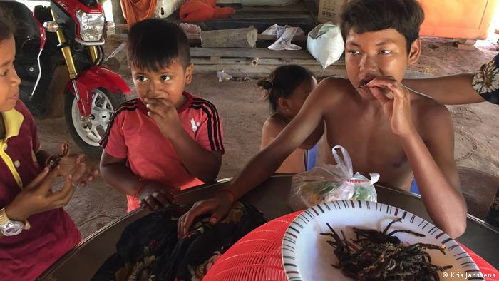 Children sitting at a table eating fried tarantulas