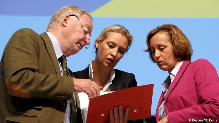 AfD members Alexander Gauland, Alice Weidel and Beatrix von Storch look at a folder (Reuters/M. Rehle)