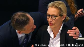 AfD - Bundesparteitag (picture-alliance/dpa/K.-J. Hildenbrand)