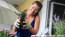 Symbolbild: Balkon mit Blumen bepflanzen