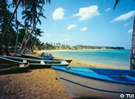 Feiner Sand, blaues Wasser, schattenspendende Palmen: Die Strände von Samana versprechen erholsames Badevergnügen. Pressefoto TUI