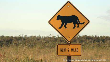 USA Florida Everglades Nationalpark Straßenschild (picture-alliance/Arco Images/A. Rose)