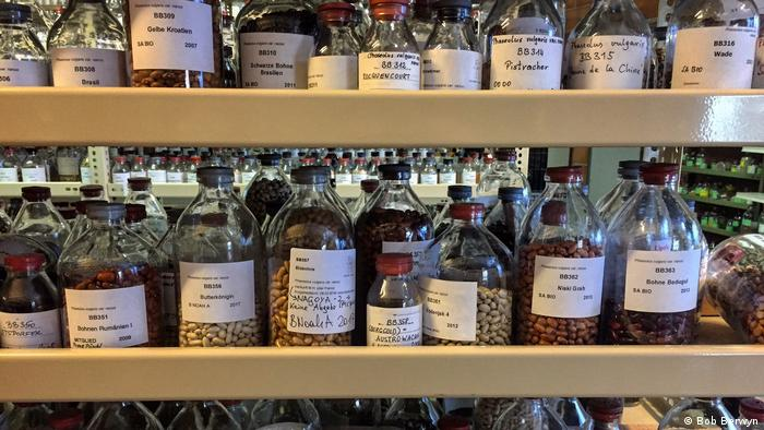Stored jars of seeds.