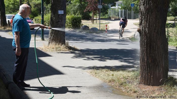 Algumas cidades, como Darmstadt, pediram que cidadãos ajudem a regar árvores