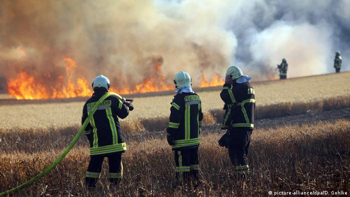 Burning field in Germany (picture-alliance/dpa/D. Gohlke)