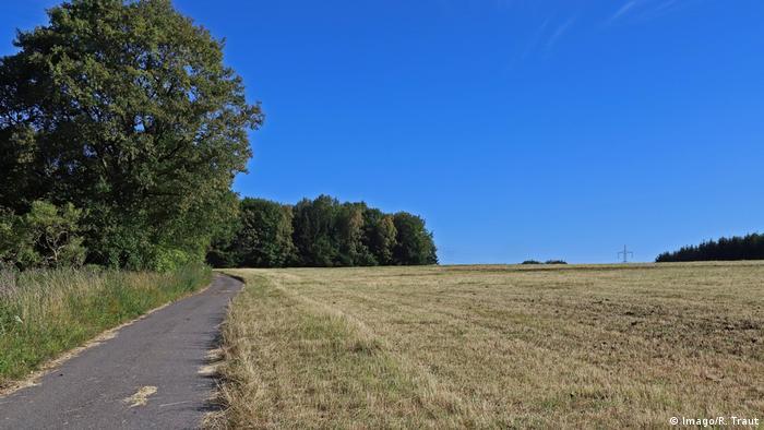 Grama queimada: verde deixa de ser predominante no oeste alemão