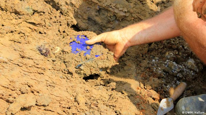 Archaeological dig site at Wijtschate, Belgium, excavating remnants of a World War I trench network; photo taken 06.07.2018. An archaeologist extracts a blue water bottle, believed to have belonged to a French soldier. Several bottles and other equipment like toothbrushes were discovered in this location. (DW/M. Hallam)