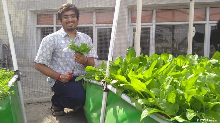 Der Trend der Terrassenlandwirtschaft wird in Delhi, der Hauptstadt Indiens, immer beliebter. Leute bauen Gemüse auf ihren Dächern an. (DW/M.Ansari)
