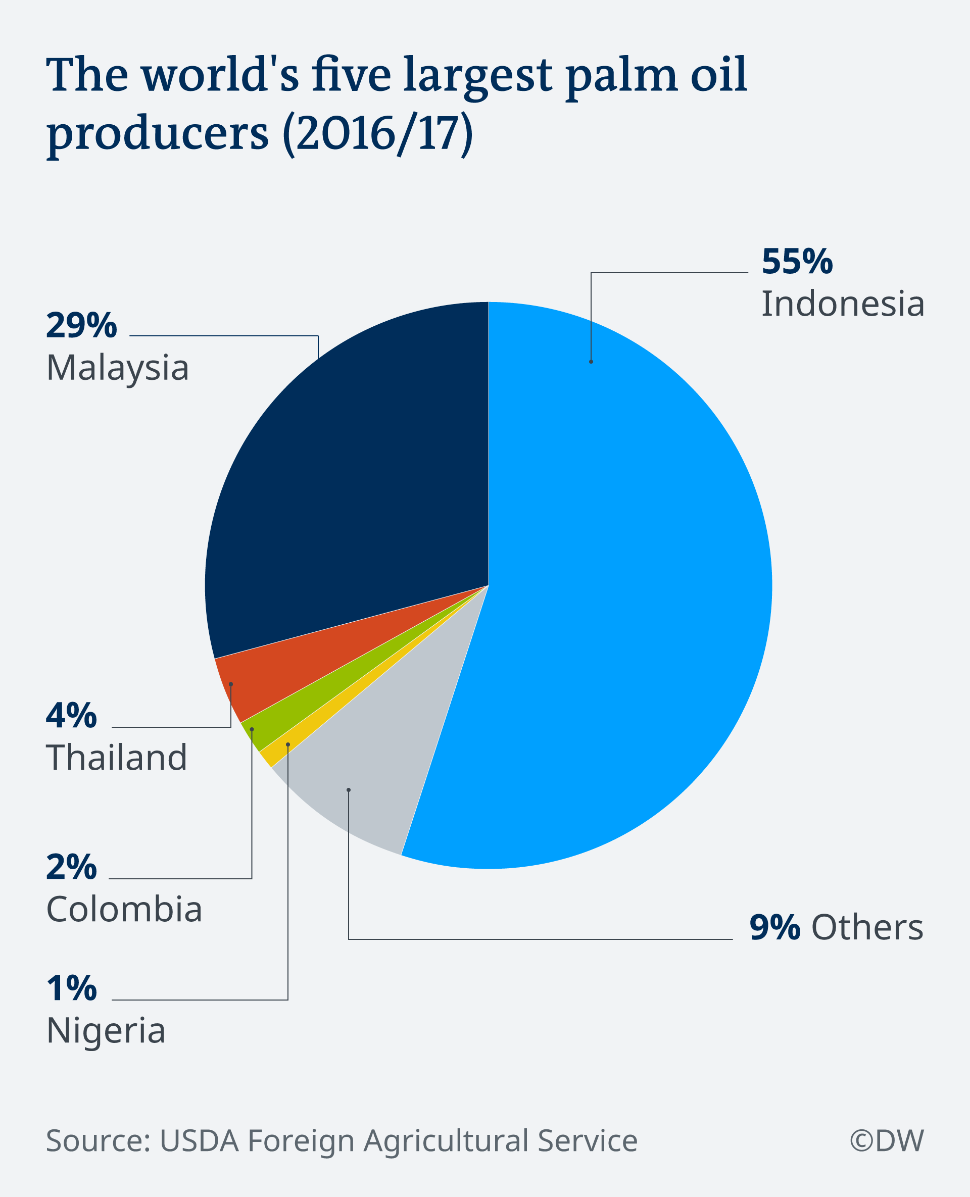 The world's largest palm oil producers