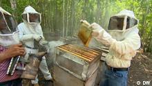 Mexiko Selva Maya: Leben vom Wald