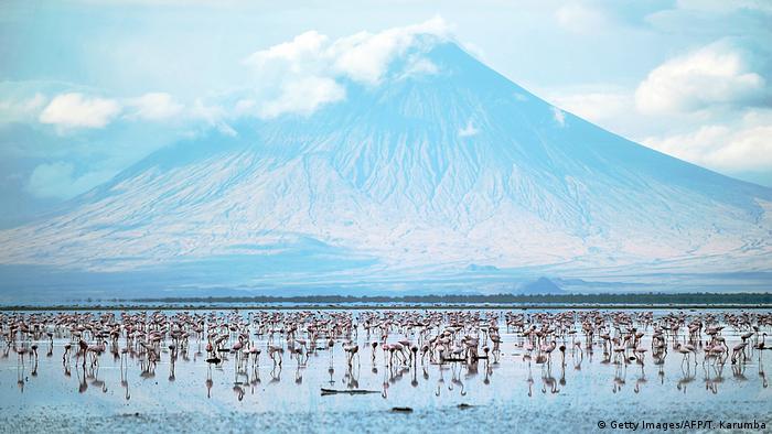 DW eco@africa - Lake Natron in Tanzania