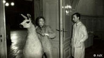 Fotograf: Erasmus Schröter, Ein Lama soll in den Ballsaal geführt werden, Leipzig 1981, Infrarotfotografie Erasmus Schröter