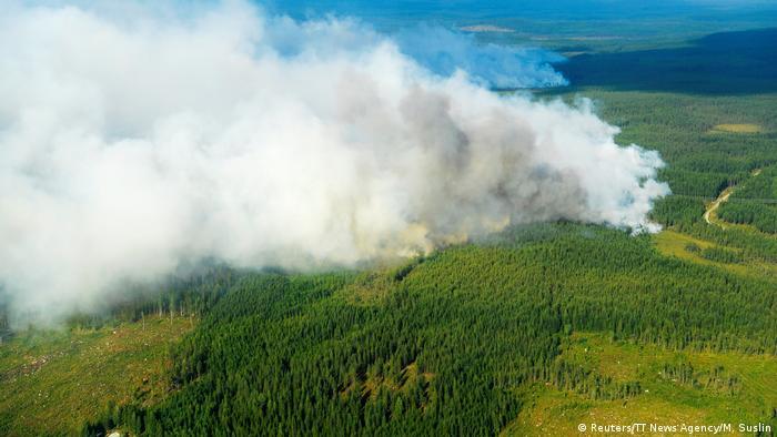 Лісова пожежа у Швеції