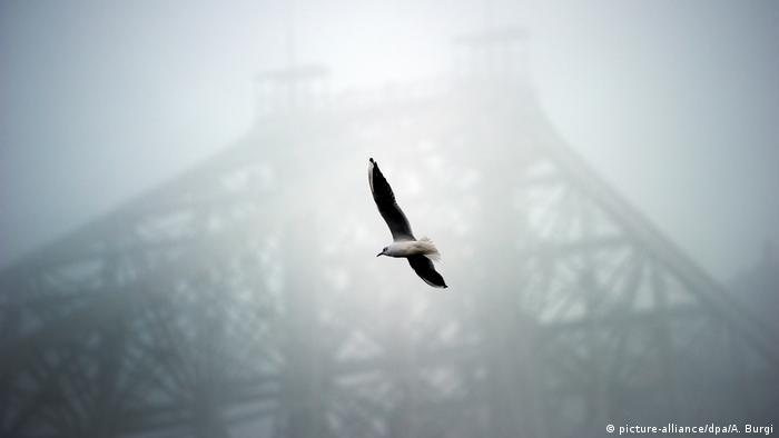 Мост через Эльбу в туманную погоду. Дрезден