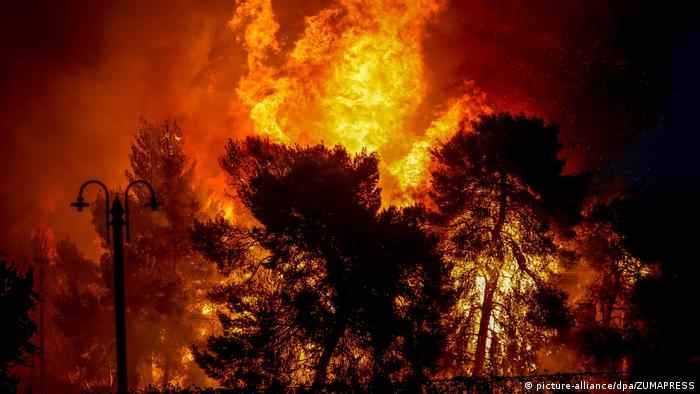 Fires fanned by gale-force winds raged through pine forests and seaside settlements on either side of the Greek capital