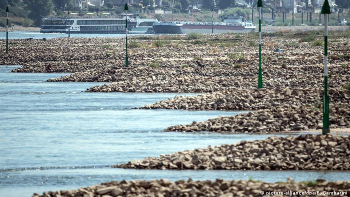 German heat wave in 2018 exposed sandbanks, rocks and vegetation in the Rhine