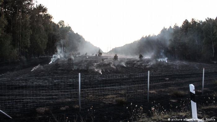 Floresta queimada nos arredores de Berlim