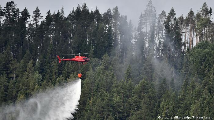 Wildfire in Sweden (picture-alliance/dpa/R. Henriksson)