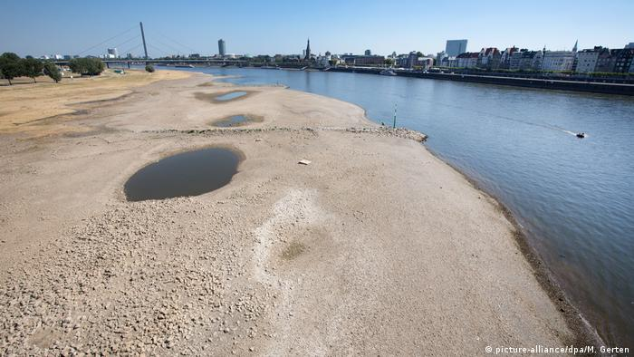 Drought affects the River Rhine (picture-alliance/dpa/M. Gerten)