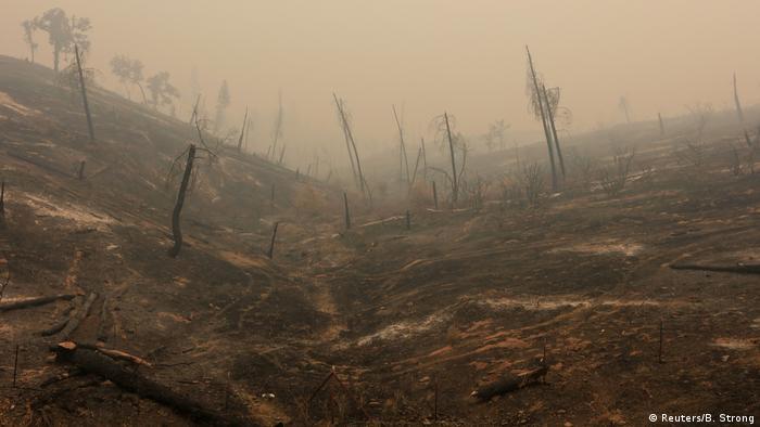 USA Kalifornien - schwere Waldbrände nahe Igo (Reuters/B. Strong)