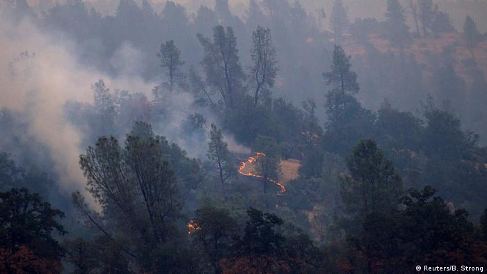 USA Kalifornien - schwere Waldbrände bei Redding (Reuters/B. Strong)