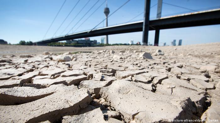 Düsseldorf Trockenheit am Rhein
