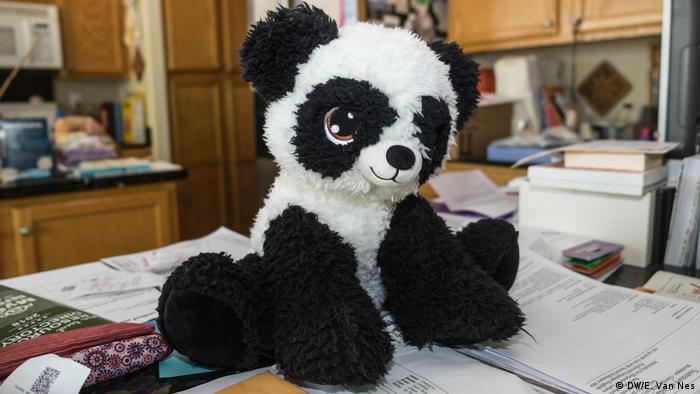 Boneka beruang di tumpukan kertas (DW/E. Van Nes)