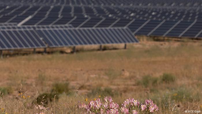 ACCIONA Pressebild Photovoltaik (ACCIONA)