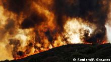 Kalifornien Lakeport Flächenbrände (Reuters/F. Greaves)