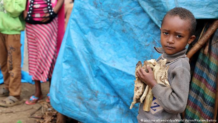 A young Ethiopian boy holds firewood in West-Guji after fleeing the violence (picture-alliance/dpa/World Vision/Fitalew Bahiru)