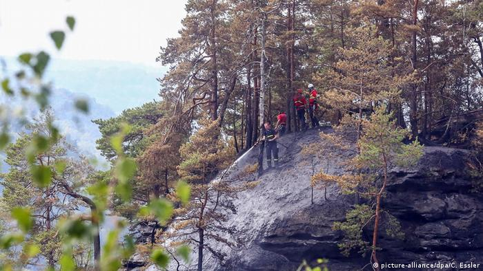 Firefighters in Saxon Switzerland