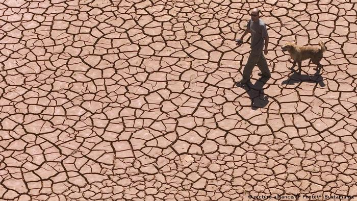 Man walking with dog on cracked, dried earth of Alcora Lake in Spain (picture-alliance/AP Photo/F. Bustamante)