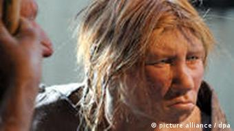 A model of a female Neanderthal at the Neanderthal Museum in Mettmann